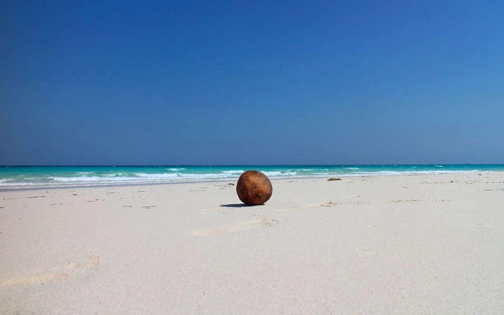Thanda Zanzibar
